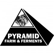 Pyramid Farm & Ferments uses seasonal ingredients like Ontario garlic to produce sauerkrauts, kimchis, and kombuchas.