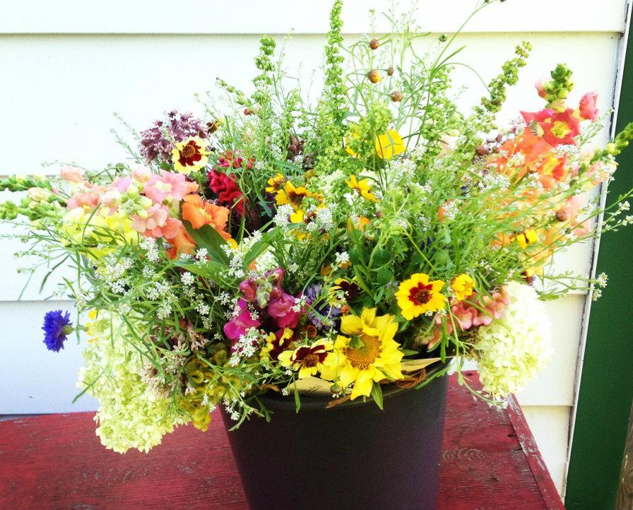 Floralora-flowers